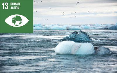 5 ways to help combat climate change