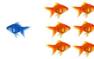 Transformational Leadership vs Transactional Leadership